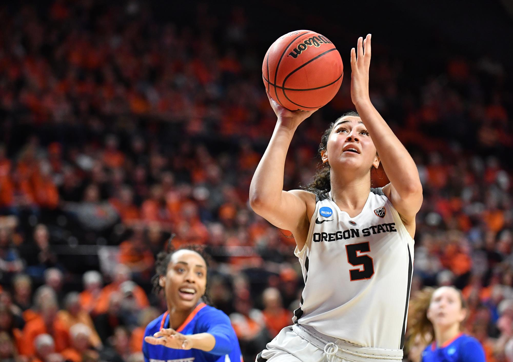 cbae01eef04 Beavers Set for Second Round Matchup with Gonzaga - Oregon State ...